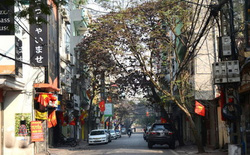 So sánh Hà Nội ô nhiễm như Bắc Kinh không đúng