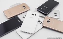 Bạn có thấy màu điện thoại năm nay trông tẻ nhạt không?