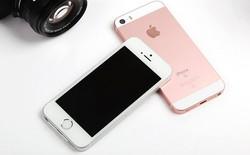 iPhone màn hình 4 inch tại Việt Nam chưa thể chết