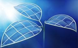 Lá sinh học sản xuất nhiên liệu từ ánh sáng, nước và không khí
