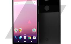 """[Tổng hợp] Những thông tin đã biết về siêu phẩm Google """"Nexus 2016"""""""