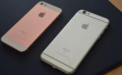 Nên mua luôn iPhone 6 hay chờ iPhone SE, bảng so sánh này sẽ cho bạn biết