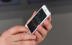 Vỏ độ iPhone 5/5s/SE thành iPhone 6 đang được bày bán công khai