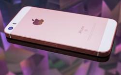 iPhone SE chính hãng về Việt Nam vào ngày 12/5, màu vàng và vàng hồng được đặt trước nhiều nhất