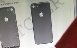 Dung lượng pin trên iPhone 7 tăng, có thể chuyển sang vỏ gốm?
