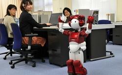 Không phải robot sát thủ, robot giúp việc mới là kẻ đe doạ nhân loại trong 20 năm tới