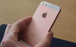 Mở hộp iPhone SE vàng hồng đầu tiên trên thế giới
