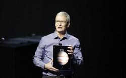 Tim Cook vui mừng vì iPad đã bắt đầu... chạm đáy