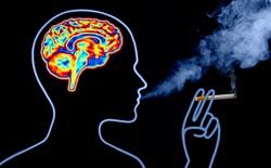 Thuốc lá chứa hơn 4.000 hóa chất, nó sẽ tàn phá não bộ của bạn