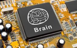 Samsung phối hợp với IBM cho ra mắt con chip giống não bộ con người