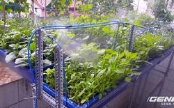 Startup nông dân thời @: chăm rau tự động, làm vườn trên mái nhà