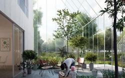 Mô hình ngôi làng sinh thái thiên đường: không ô nhiễm, không cần điện, tự cung tự cấp