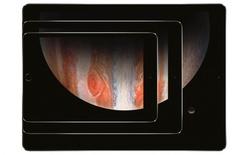 Apple liệu có tổ chức sự kiện iPad cho năm nay? Có 2 kịch bản được đặt ra