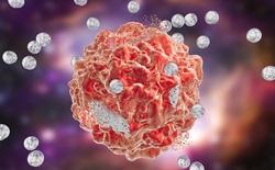 Các nhà khoa học tình cờ phát hiện cách chữa ung thư có thể sớm đưa vào ứng dụng