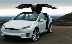 Elon Musk xác nhận xe bán tải và xe buýt cỡ nhỏ có thể tự lái sẽ được công bố trong năm 2017