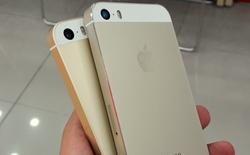 iPhone SE chính hãng về Việt Nam: giá từ 11,5 triệu, cùng bản gold nhưng lại khác màu iPhone 5s