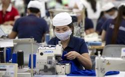 Bước đột phá mới của robot sẽ đẩy 90% công nhân ngành may mặc tại Việt Nam vào cảnh thất nghiệp