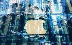 Làm thế nào các công ty nhỏ có thể hút được nhân tài từ Google, Facebook, Apple?