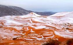 Lần thứ 2 trong lịch sử, tuyết rơi ở sa mạc Sahara