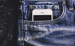 Sóng điện thoại KHÔNG làm nam giới bị vô sinh