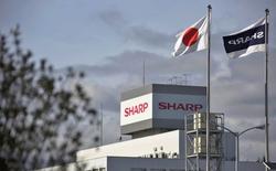 """Foxconn đột ngột trì hoãn việc mua lại Sharp vì quá nhiều """"nợ tiềm tàng"""""""