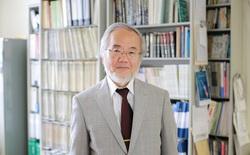 Giải Nobel đầu tiên năm 2016 vừa được trao cho nhà khoa học người Nhật