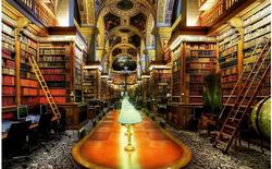 Những người yêu sách không thể bỏ qua 10 thư viện tuyệt đẹp sau