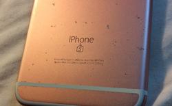Người dùng trên thế giới bức xúc với lỗi trầy xước trên iPhone 6S