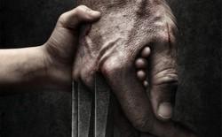 Con gái của Wolverine có thể sẽ xuất hiện trong phần 3 serie về người sói