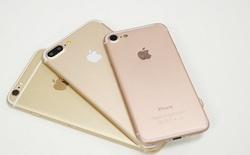 Lộ hình ảnh chứng minh iPhone 7 Plus sẽ được trang bị màn hình 2K
