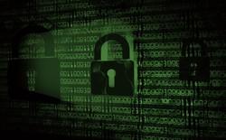 Buông lời chê bai lời khuyên bảo mật của báo chí, lãnh đạo Mỹ ngay lập tức bị hack