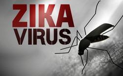 Công nghệ phát hiện virus Zika qua đường nước bọt, chỉ tốn có 2 USD