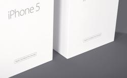 Apple gặp rào cản lớn ở thị trường Ấn Độ, bị cấm bán iPhone tân trang