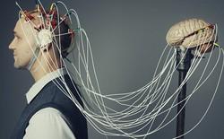 Nhờ một thứ trong não chúng ta, FBI hay CIA có thể đọc được suy nghĩ của mỗi người