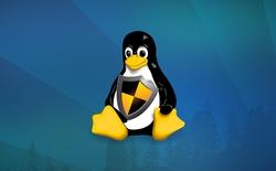 Linux tồn tại một lỗ hổng bảo mật nghiêm trọng vẫn chưa khắc phục đã 5 năm nay, cho phép hacker tấn công trong 60 giây