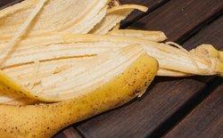 Đừng vứt vỏ chuối sau khi ăn vì chúng hoàn toàn có thể ăn được như ruột