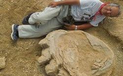 Một trong những dấu chân khủng long lớn nhất từ trước đến nay được phát hiện