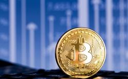 Thưởng 3,5 triệu USD cho ai tìm được thông tin về lượng bitcoin bị đánh cắp tuần trước