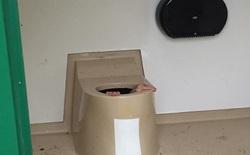 Bị giam trong bể phân của nhà vệ sinh hơn một giờ vì cố nhặt điện thoại bị rơi