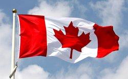 """Canada xác nhận """"thủ phạm"""" làm sập web nhập cư nước này chính là người Mỹ sau cuộc bầu cử tổng thống"""
