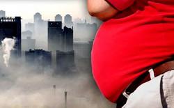 Ô nhiễm không khí lại là nguyên nhân dẫn đến béo phì và tiểu đường