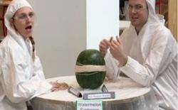 Quay video về quả dưa hấu, 2 người này kiếm về 800 nghìn người theo dõi và 8 triệu lượt xem