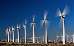 Khởi công dự án điện gió gần 4.000 tỷ đồng