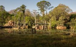 Bên trong công viên bị bỏ hoang 15 năm đầy ma mị của Disney