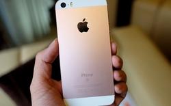 iPhone SE vàng hồng đầu tiên tại VN: giống iPhone 5s, giá 10,96 triệu đồng