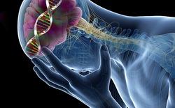 Nhà khoa học cảnh báo chỉnh sửa gen để ngăn cản ung thư cũng là tuyệt diệt thiên tài từ trong trứng nước