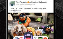 Facebook tung bộ biểu tượng cảm xúc dành riêng cho Halloween