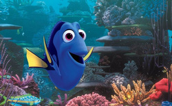 Giáo sư khuyên bạn đừng vì mê mẩn Finding Dory mà đi mua cá cảnh