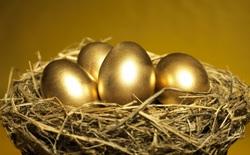 """FPT Trading – từ """"con gà đẻ trứng vàng"""" của ông Trương Gia Bình đến viễn cảnh chật vật mưu sinh"""