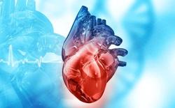 Tại sao ăn nhiều đường có thể phá hủy trái tim của bạn?